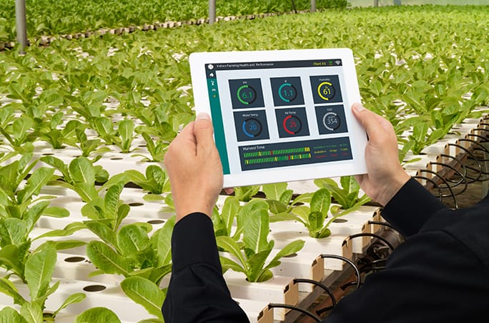 Grower with tablet over indoor agriculture facility